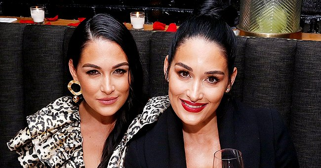 Inside WWE Superstars Nikki and Brie Bella's Careers — Winning Divas Championships and More