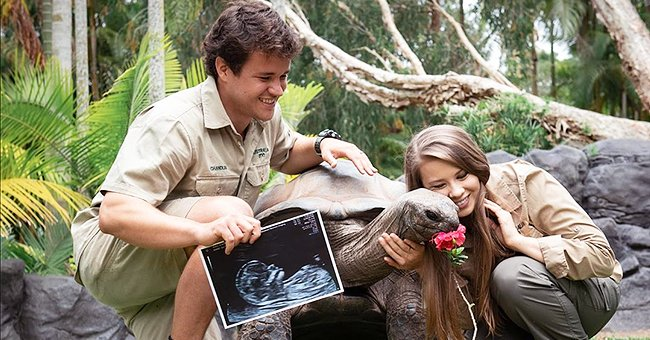 Check Out Bindi Irwin & Husband Chandler Powell's Sweet Gender Reveal for Their First Child