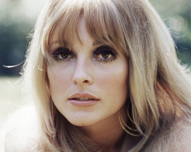 Sharon Tate, dans le nouveau film Il était une fois à Hollywood | Photo: Getty Images