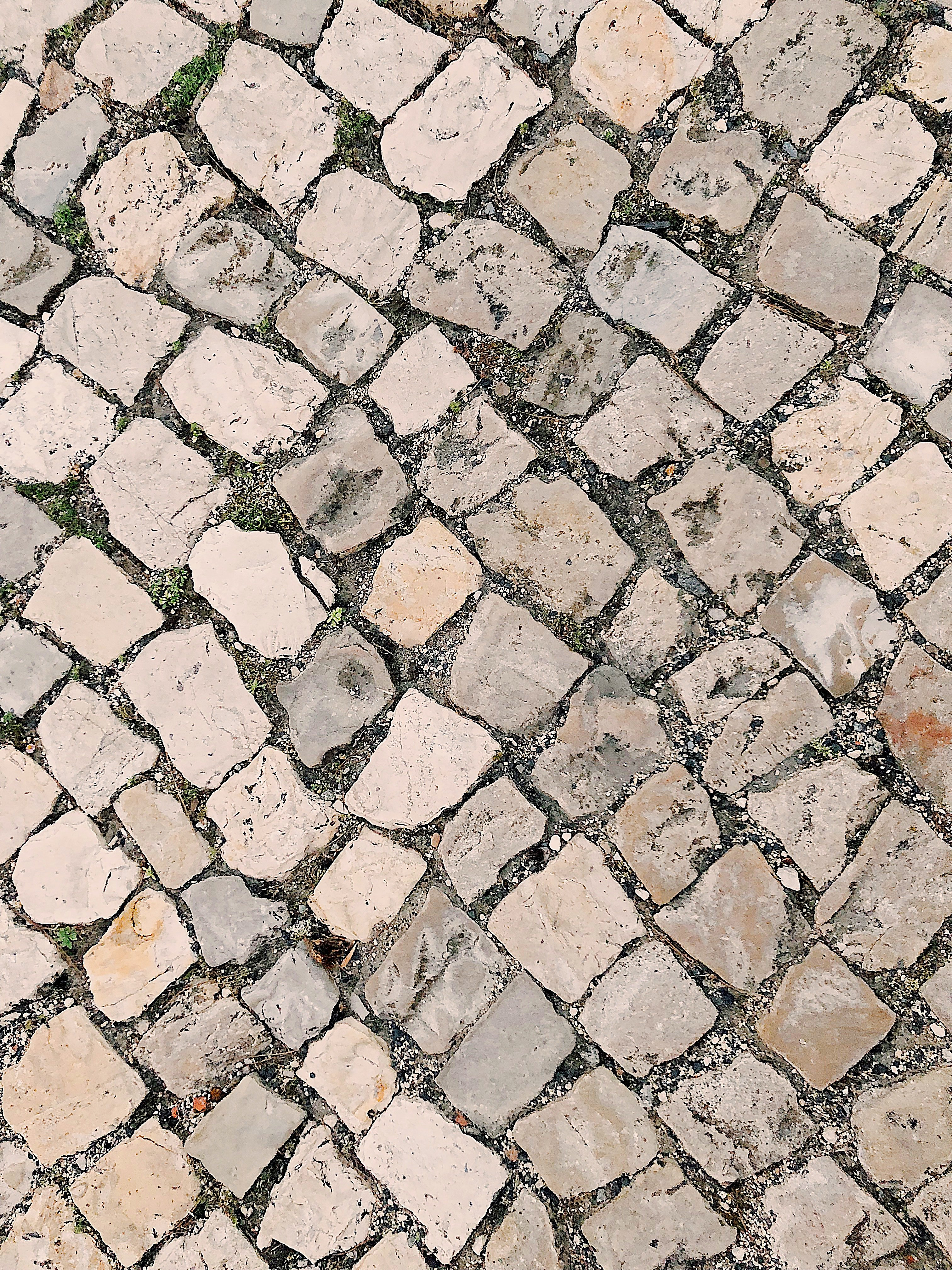 The man started collecting cobblestones outside his house. | Photo: Pexels