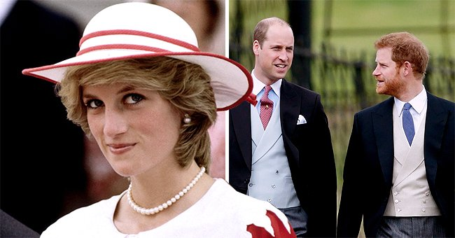 Express: New Netflix Princess Diana Documentary Might Open New Wounds for William and Harry
