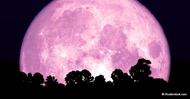 Here's How to See the 'Pink Moon' That's Coming Soon