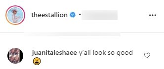 A fan's comment on Megan Thee Stallion's post on her Instagram page | Photo: instagram.com/theestallion