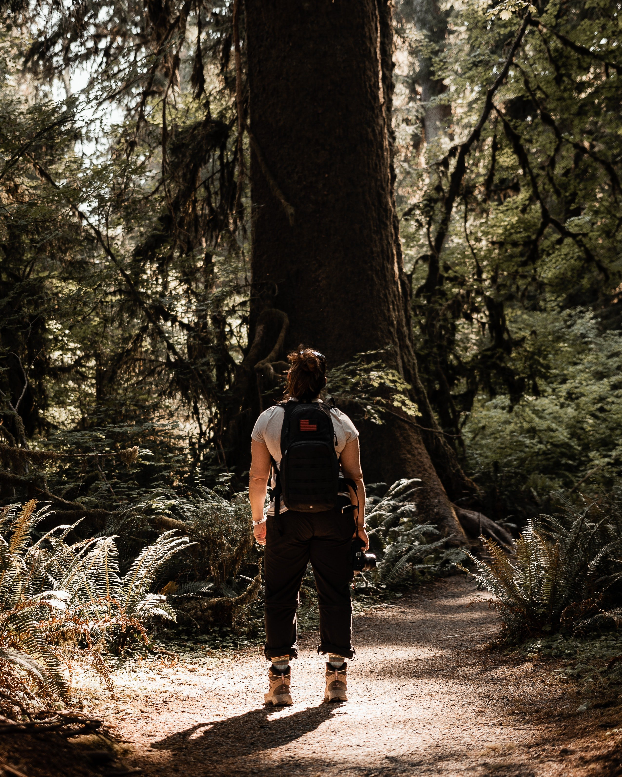 A woman with a backpack in the forest. | Pexels/ Messina Photo