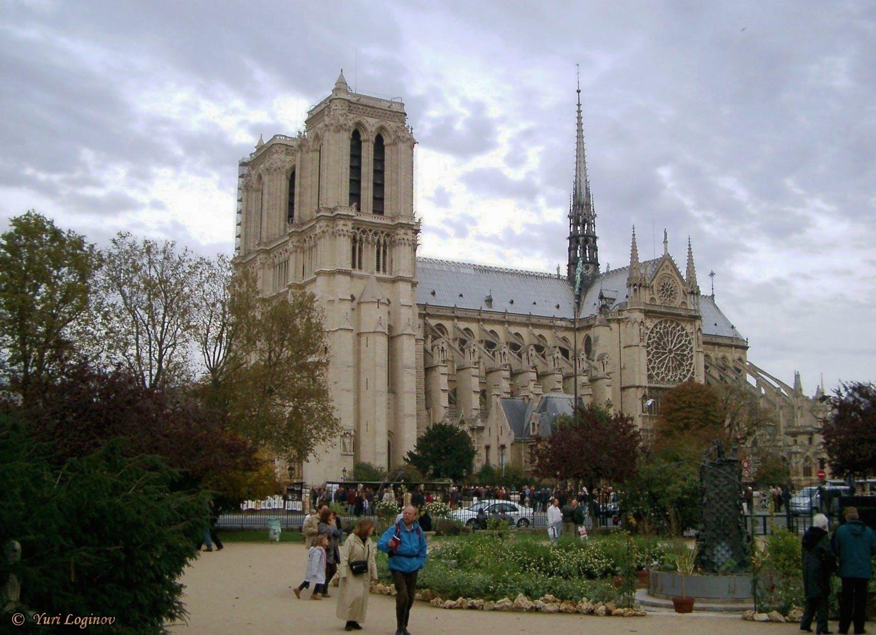 Catedral de Notre Dame. París, Francia. | Imagen: Pexels