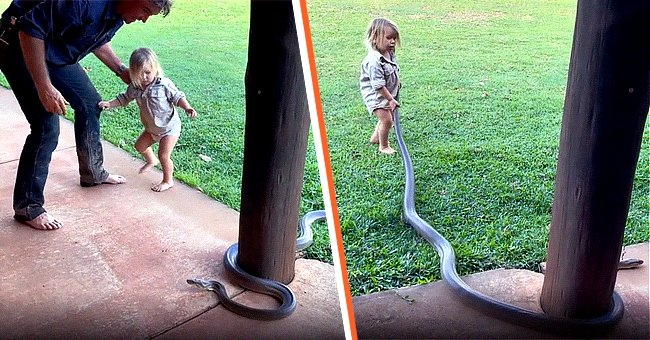 Wright pictured with his 2-year-old son Banjo as he tries to handle a giant python.   Photo:  instagram.com/mattwright