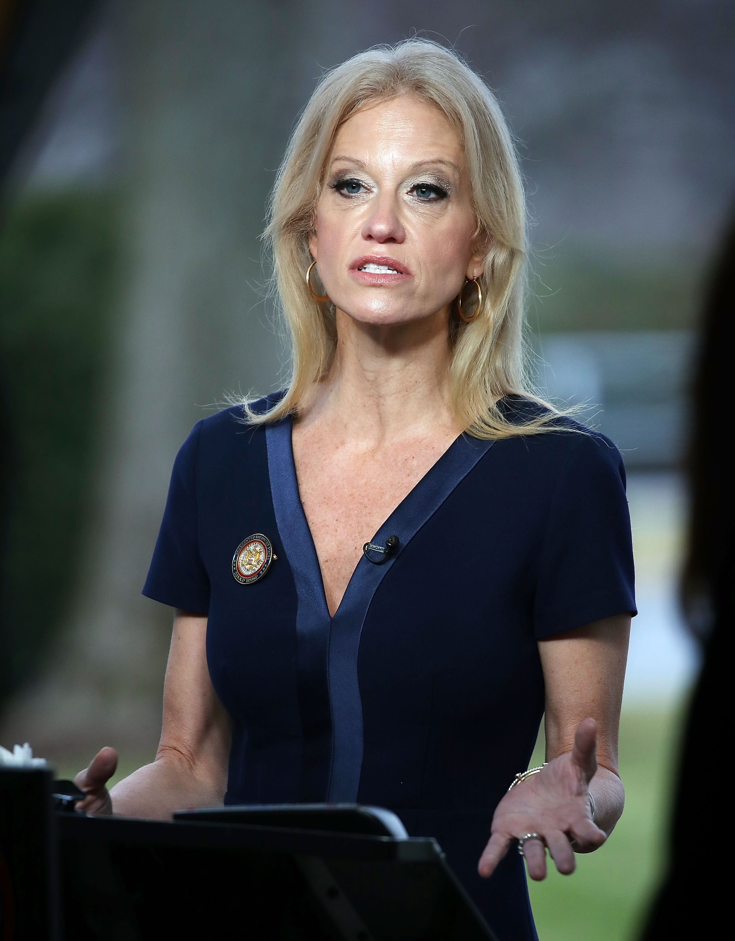 Kellyanne Conway, appears on the Sunday morning show This Week with George Stephanopoulos January 22, 2017 in Washington, DC | Photo: Getty Images