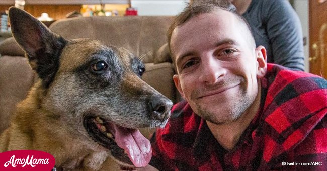 Heartfelt Story: Army Veteran Reunited with a Bomb-Sniffing Dog He Served with in Afghanistan