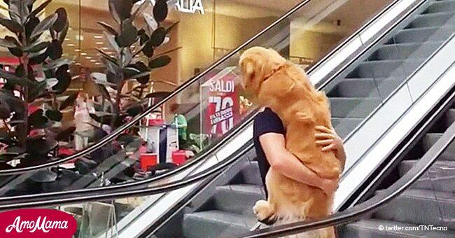 Hombre ayuda a su mejor amigo canino a superar su miedo a las escaleras eléctricas