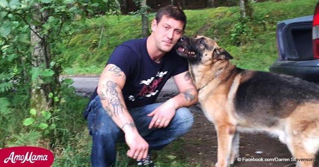 Veterinario atacado por poner a 200 perros inyecciones anticuadas que causan terrible dolor