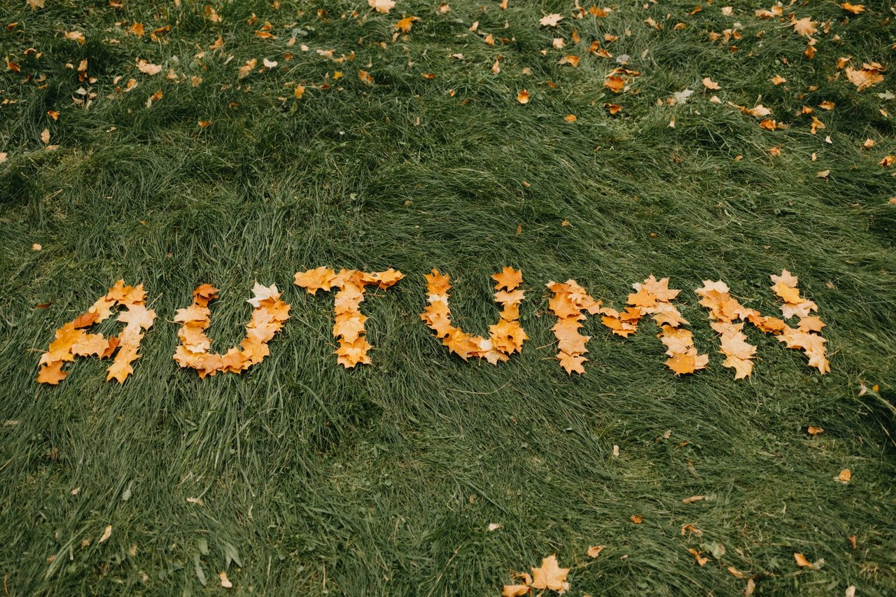 Photo of Autunm written with leaves   Photo: Pexels