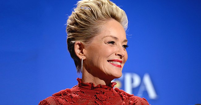 Sharon Stone Recalls Intense Feeling of Being Struck by Lightning & Thrown across Her Kitchen