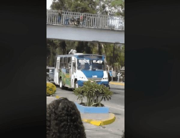 Frau landet auf Busdach - Quelle: Facebook / Charlie Saucedo