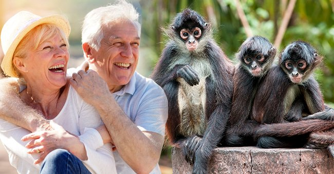 Story of the Day: A Man and His Wife Traveled to the Zoo