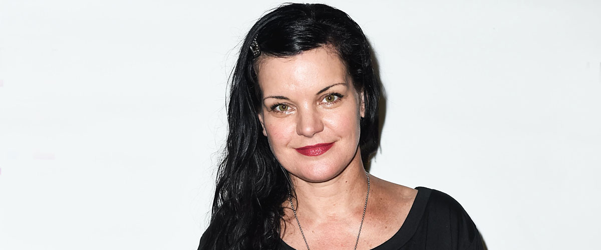 Pauley Perrette's Accusations against Mark Harmon Divides NCIS Fans