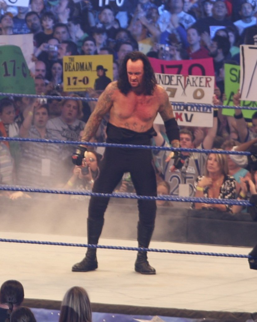 The Undertaker at Wrestlemani 25 at Reliant Stadium in Houston, Texas on April 5, 2009. | Photo: Ed Schipul from Houston, TX,CC BY-SA 2.0, Wikimedia Commmons