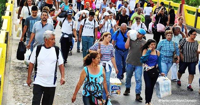 Perros inocentes caen víctima de crisis en Venezuela abandonados en frontera por dueños que huyen
