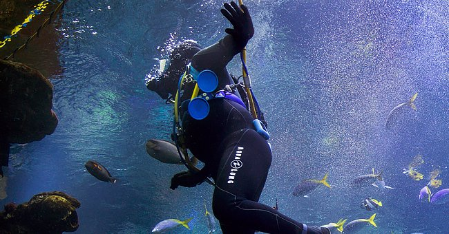 Daily Joke: A Commercial Diver Sent an Email to His Sister