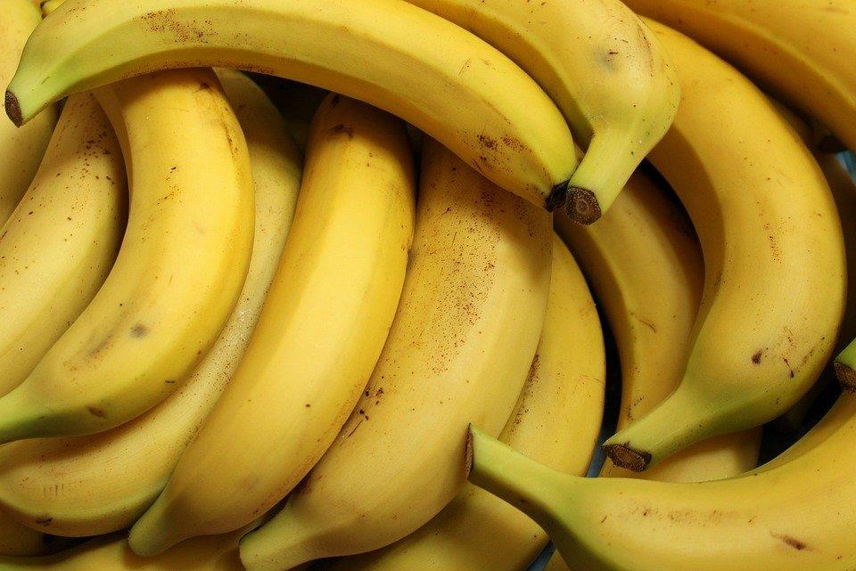Plátanos / Imagen tomada de: Pixabay