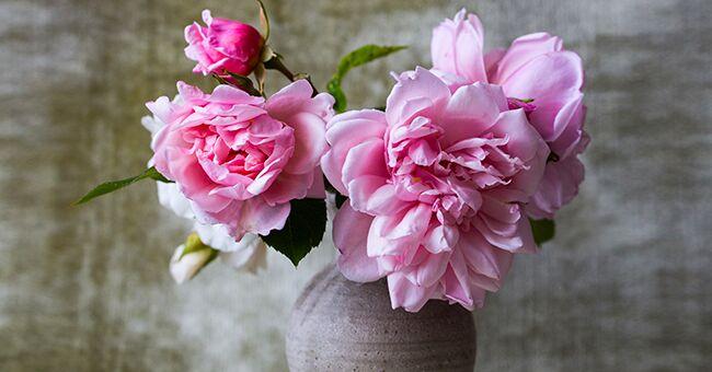 Des astuces pour faire durer les fleurs plus longtemps