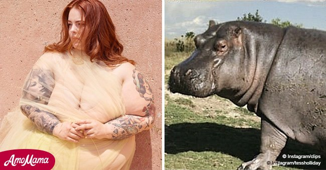 Plus-size model finds a clever way to address body-shamers that compare her to a hippo