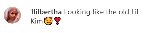 A fan's comment on Lil Kim's look at the New York Fashion Week.   Source:: Instagram.com/Lilkimthequeenbee