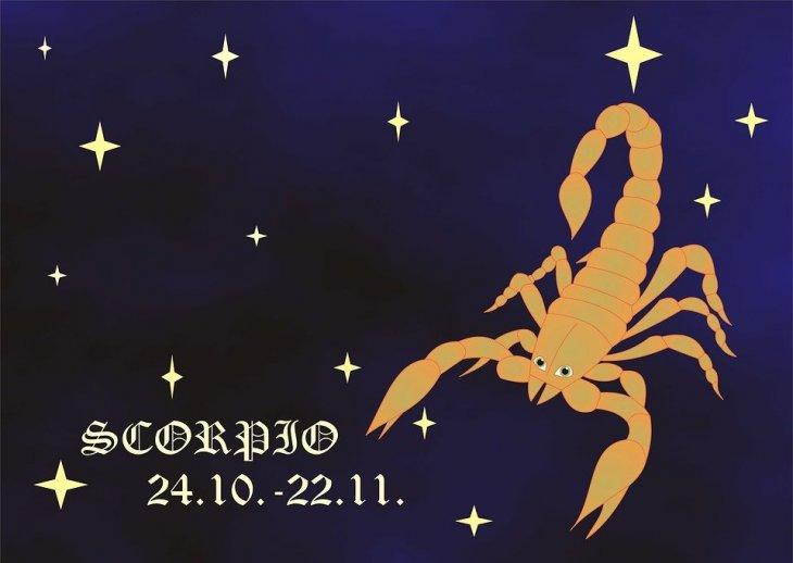 Escorpión | Foto: Pixabay