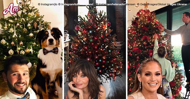 Joyeux Noël: comment les célébrités ont-elles décoré leurs arbres pour la fête?
