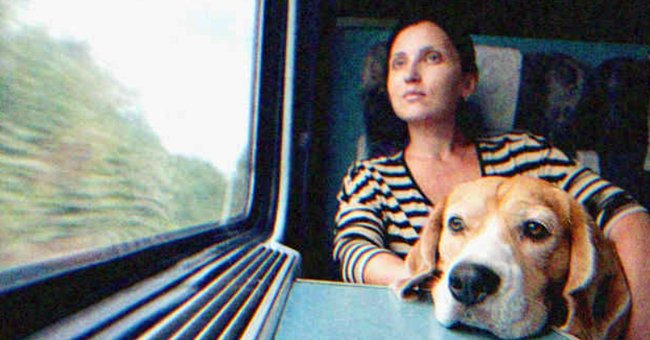 A woman looking out the train with her dog. | Source: Shutterstock