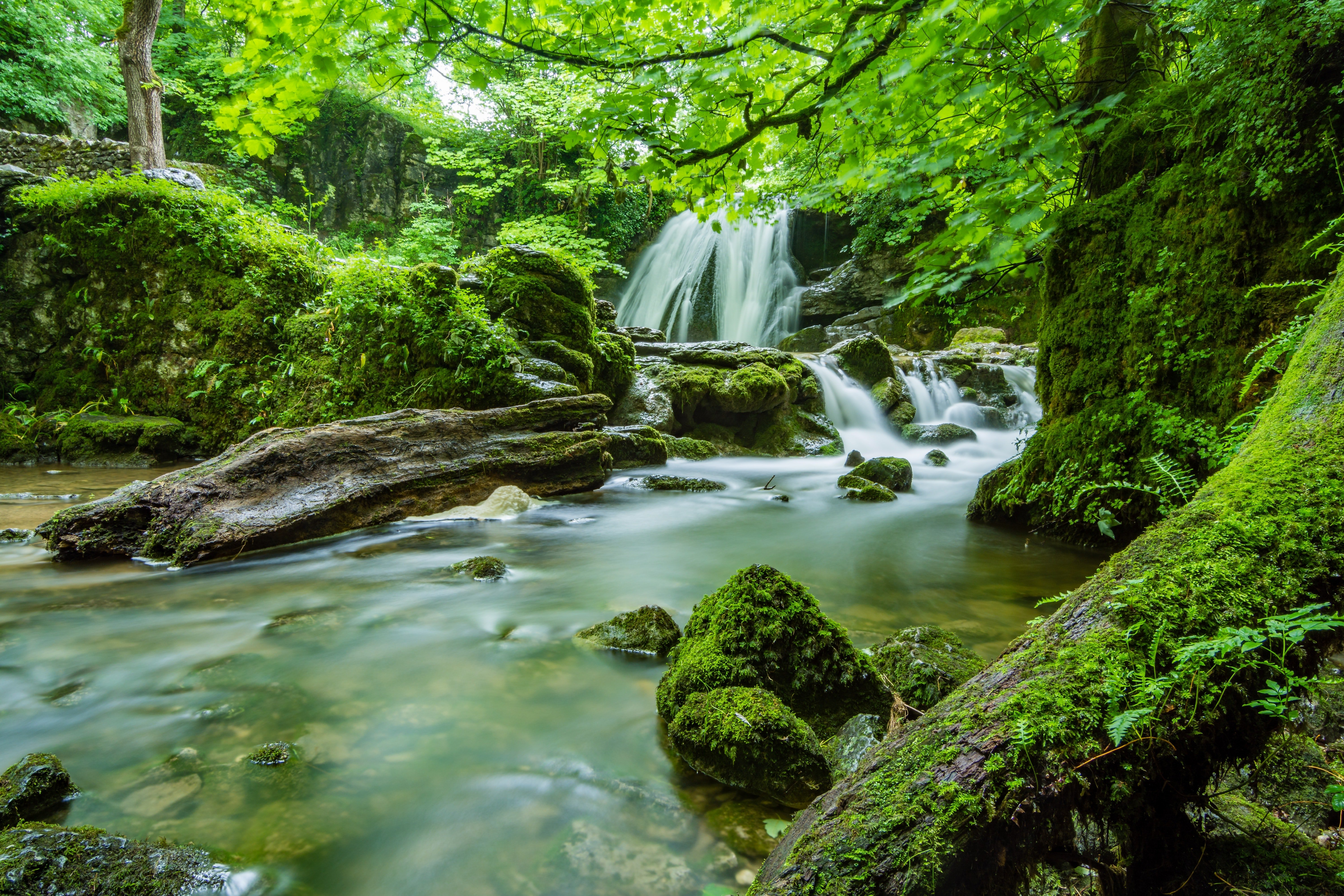 Pictured - An image of waterfalls in a forest | Source: Pexels