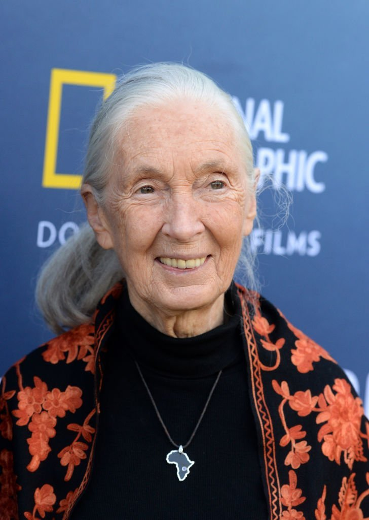 Jane Goodall attends National Geographic Documentary Films' SEA OF SHADOWS Los Angeles Premiere at NeueHouse Los Angeles | Photo: Getty Images