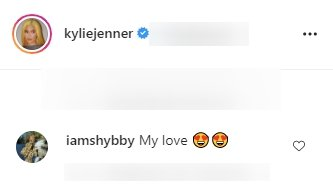 Fan's comment under a picture of Kylie Jenner posted on her Instagram page.   Photo: Instagram/kyliejenner