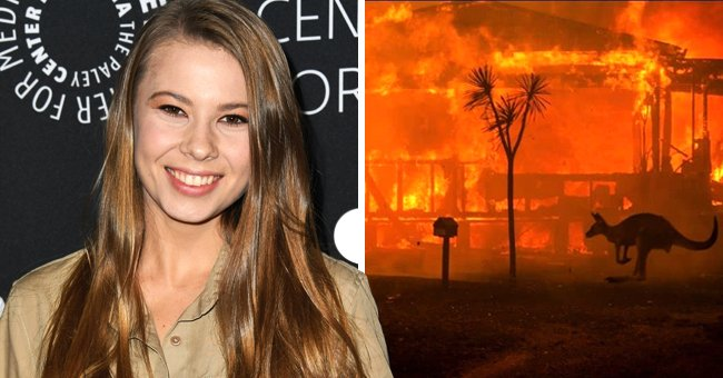 Bindi Irwin Posts about Late Dad Steve and Wishes He Was Still Alive Amid Australia Wildfires