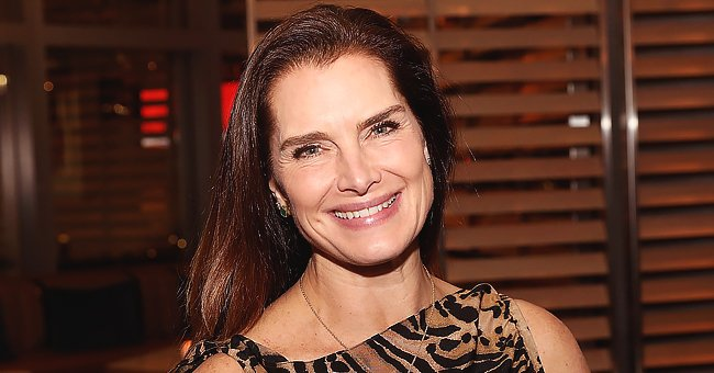 Brooke Shields' Husband Chris Is a Big Part of the Actress's Life — What We Know about Him