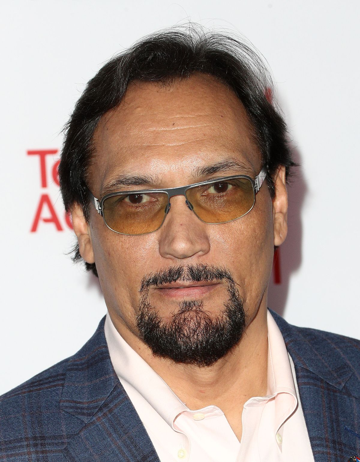 Jimmy Smits at the Television Academy's 24th Hall of Fame Ceremony on November 15, 2017, in North Hollywood, California | Photo: Frederick M. Brown/Getty Images