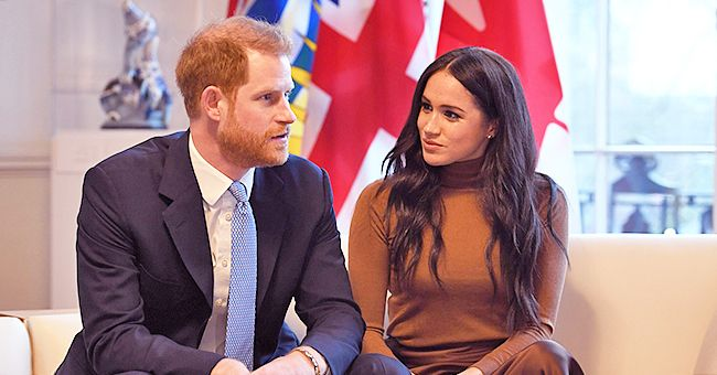 Meghan Markle & Prince Harry's Two Dogs Have Reportedly Already Adjusted to Their New Life in Canada