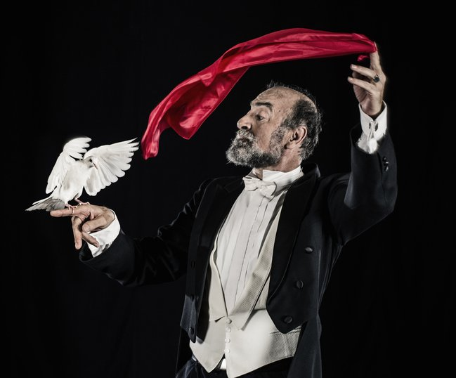 A magician doing a magic trick reveals white dove under a silk cloth that rests on his fingers, Spain | Source: Getty Images