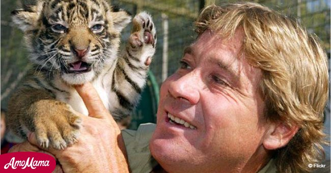 'Crocodile Hunter' Steve Irwin received tremendous posthumous tribute from Hollywood