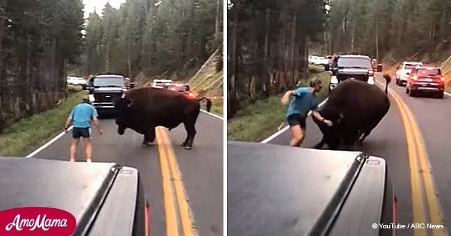 Man rudely taunts bison in Yellowstone National Park