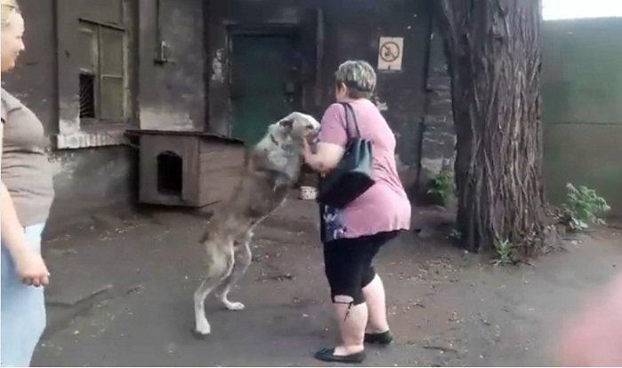 Mujer y su perro se reencuentran después de dos años. | Foto: Facebook/schastlivie.zhivotnie