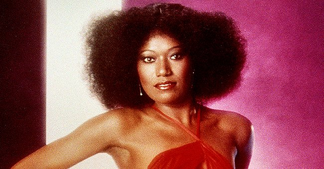 The Pointer Sisters' Bonnie Pointer Dies at 69 – Glimpse inside Her Brilliant Singing Career