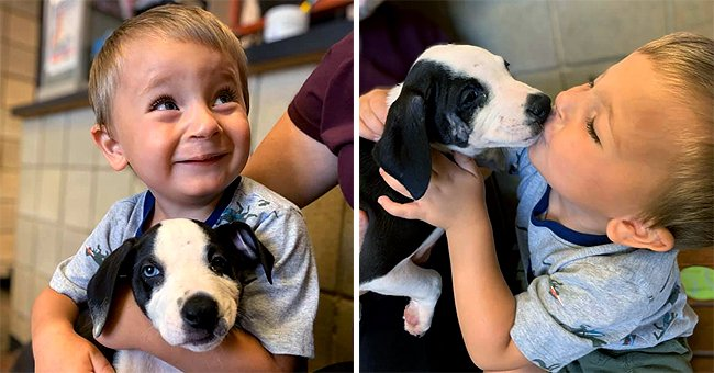 2-Year-Old Boy Adopted a Puppy with the Same Physical Defect — Details on the Touching Story