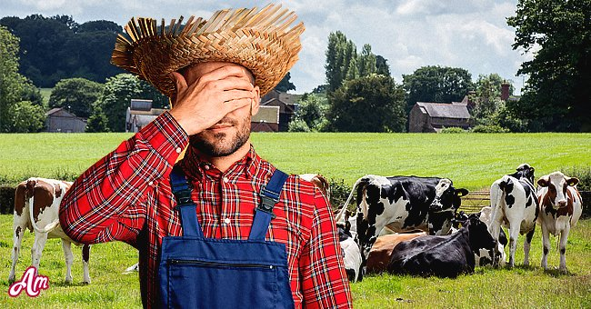 The farmer received a very surprising question about his animals.   Photo: Shutterstock