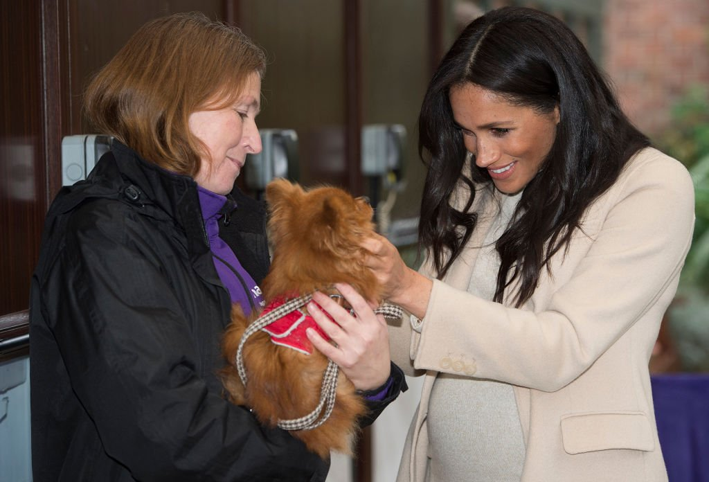 """Meghan, Duchess of Sussex meets a dog named """"Foxy"""" during her visit to the animal welfare charity Mayhew in London on January 16, 2019. 
