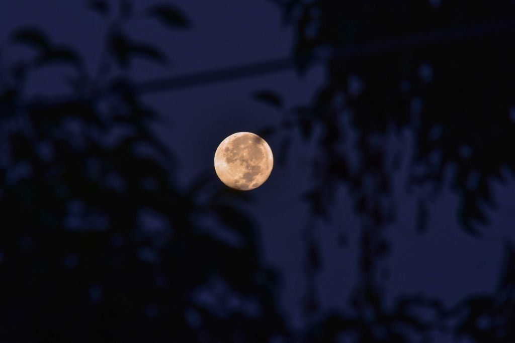 The Harvest Moon that occurs every September, and aligns with the Autumnal Equinox was captured on September 26, 2018 | Photo: Getty Images