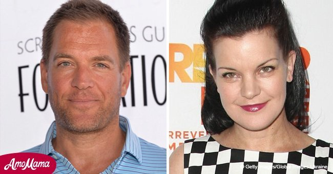 Michael Weatherly breaks the silence over Pauley Perrette's exit from 'NCIS'
