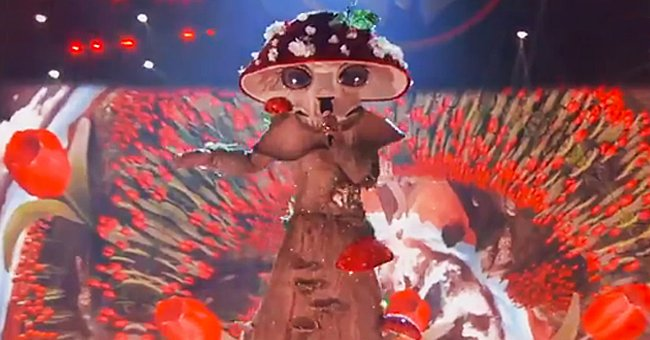 'The Masked Singer's' Mushroom Wows Fans with This Performance on the Show's Recent Episode