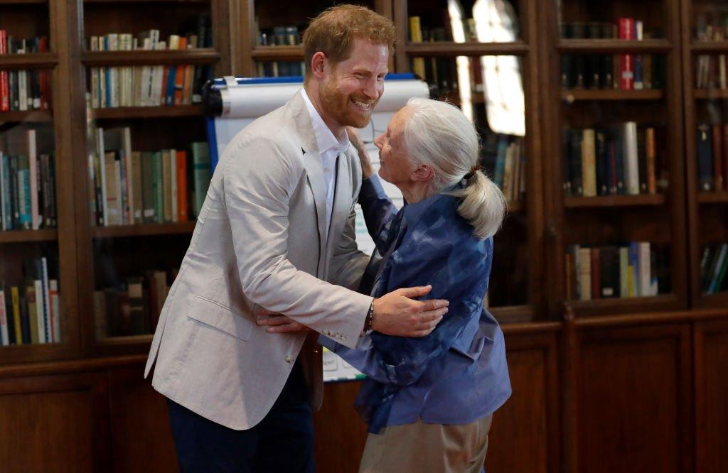Le prince Harry, duc de Sussex et le Dr. Jane Goodall s'embrassent alors qu'il assiste à la Roots & Shoots Global Leadership Meeting du Dr. Jane Goodall au Windsor Castle | Photo : Getty Images