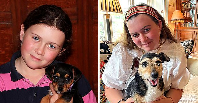 Dog Is Found Just a Few Miles from Her Home 11 Years after Vanishing from Family Garden