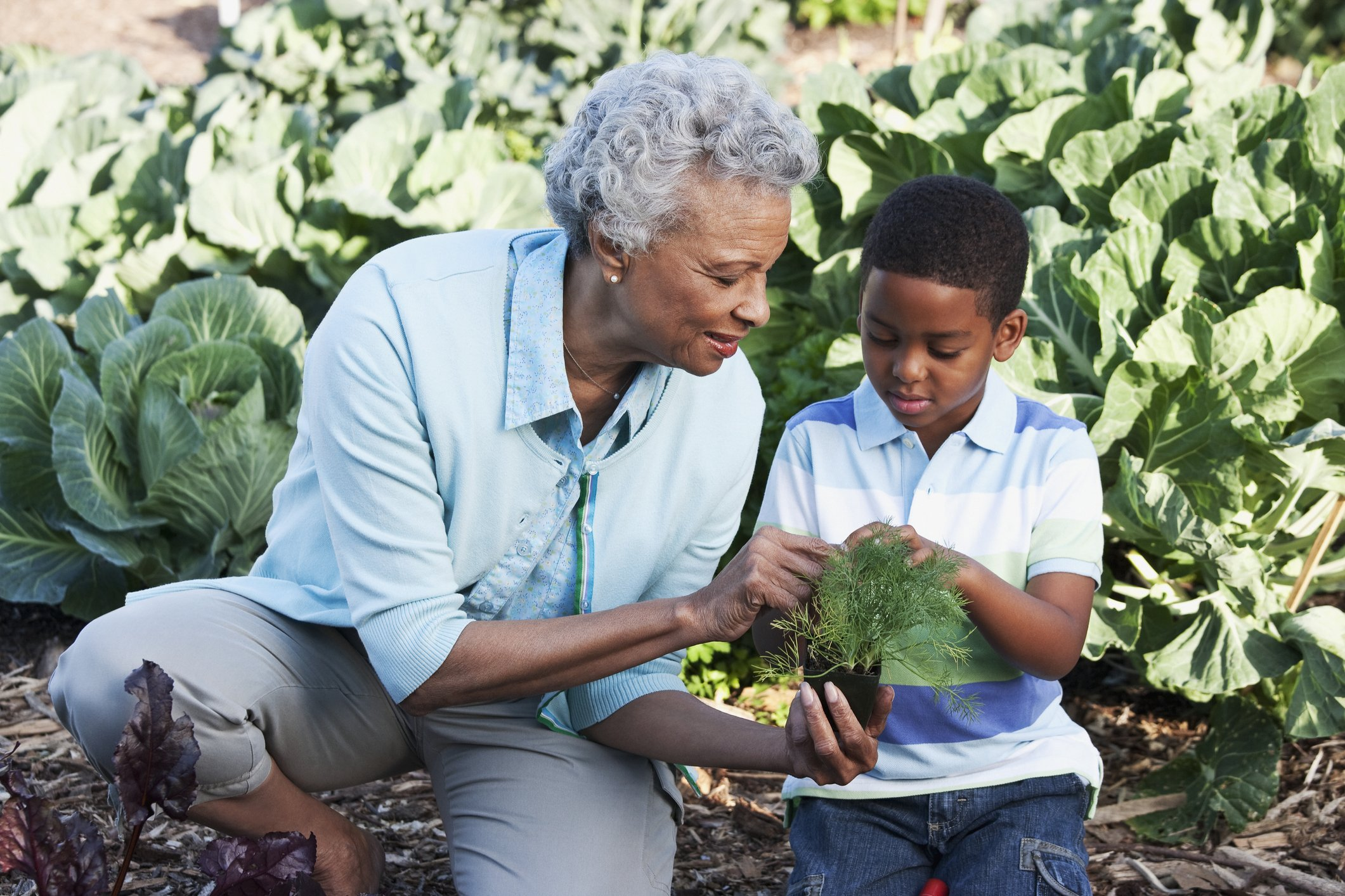 African grandmother gardening with grandson | Photo: Getty images